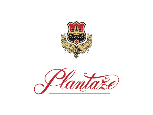 """Joint work on a Strategy of digital transformation for the largest company in Montenegro """"Plantaze"""""""