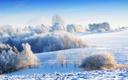 BMDA Newsletter - December